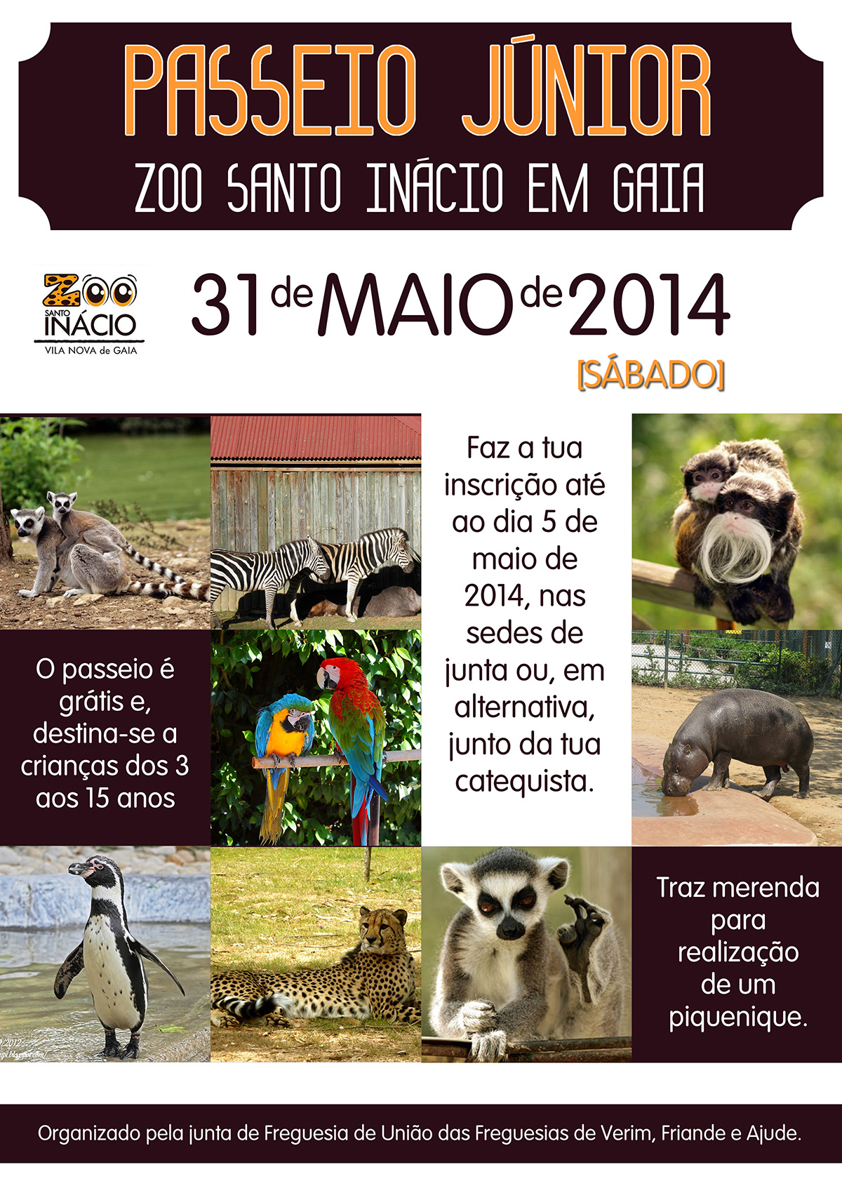 cartaz zoo